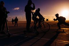 L1000241 (Eduardo Acosta Photography) Tags: ambulantphotographer beach leicaq ocean people sand santamonica seagulls street water pier