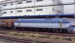 Japan Rail electric locomotive in container freight service at Kyoto in the mid-90s (Tangled Bank) Tags: jr japan rail japanese asia asian urban train station pasenger equipment stock kyoto 1990s 90s railway railroad