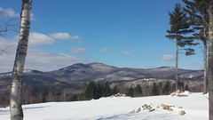 A snapshot of this afternoon's adventure auto ride: (Art of MA Foto Stud) Tags: snow winter mountains whitemountains newhampshire tuftonboro forest birch pine fir