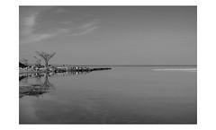 Long Island (PhotoRapper (Michael)) Tags: sigma dp3 merrill sigmadp3merrill sigmalens foveon digital bw longisland ny newyork longislandsound blackandwhite crabmeadowbeach beach huntington blackwhite