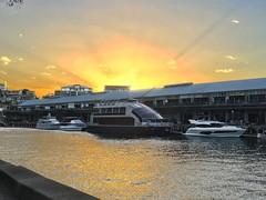 IMG_2278 (dudegeoff) Tags: 20190212syddarlingislandwalk february 2019 sydney nsw australia walks sunsets