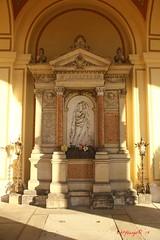 IMG_8448 (Pfluegl) Tags: wien vienna zentralfriedhof graveyard europe eu europa österreich austria chpfluegl chpflügl christian pflügl pfluegl spring frühling simmering