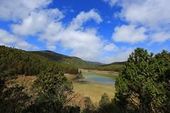 IMG_4326 (rc90459) Tags: 翠峰湖 太平山 宜蘭縣 大同鄉 環山步道