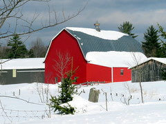 Very red barn (yooperann) Tags: red barn pine tree snow cloudy sky day winter marquette county upper peninsula michigan