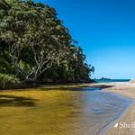 Otamure Bay- Whananaki, Northland thumbnail
