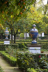 20190331-Unelmatrippi-Parque-Maria-Luisa-DSC0651 (Unelmatrippi) Tags: sevilla seville espanja spain parquedemaríaluisa maríaluisapark europe eurooppa