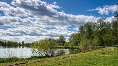 IMGP0974 copy- on1 (douglasjarvis995) Tags: lake water garden uk england gree grass