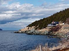 Sunny St. Philips (Tk_White) Tags: panasonic lumix g9 25mm 17 prime landscape ocean st philips newfoundland spring dxo photolab
