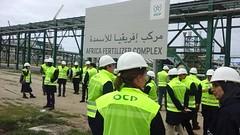 Déposez votre Candidature spontanée à l'Office Chérifien des Phosphates (OCP) (dreamjobma) Tags: a la une candidatures spontanées dreamjob khedma travail emploi recrutement toutaumaroc wadifa alwadifa cdi cdd maroc candidature spontanée ocp recrute