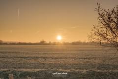Sunrise in november (Light and shade by Monika) Tags: sunrise landschaft münsterland farben autumn