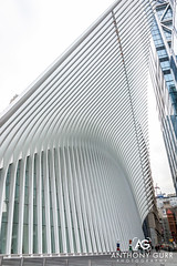 Oculus Building, New York City, USA (AnthonyGurr) Tags: newyork newyorkcity nyc thebigapple america usa unitedstates oculus building architecture modern worldtradecenter anthonygurr manhattan city