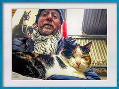 0020 (gill4kleuren - 18 ml views) Tags: pussy puss poes chat mieze katje gato gata gatto cat pet animal kitty kat pussycat poezen