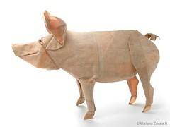 Pig - Mariano Zavala B. (Mariano Zavala B) Tags: pig cerdo mariano zavala happy new year 2019 chinese felíz año nuevo chino