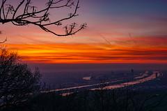 Kahlenberg (Halvridder) Tags: kahlenberg wien vienna dawn sonnenaufgang sunrise sony a6000 aussicht view bike2work sky himmel wolken morgenrot burningsky sigma30mm danube donau ausblick