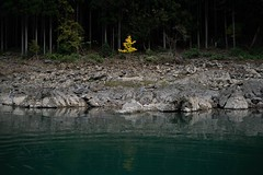 DSC09732 (wertyuioqp) Tags: river kyoto japan arashiyama boat rafting trees mountains nature autumn fall