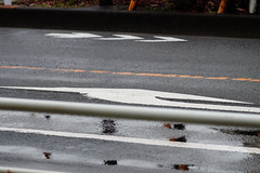 右折 (frenchvalve) Tags: 右折 道路標示 雨 roadmarking rain mirrorless
