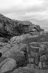 Cliffs,Collieston_Mar 19_528 (Alan Longmuir.) Tags: monochrome grampian aberdeenshire collieston cliffs