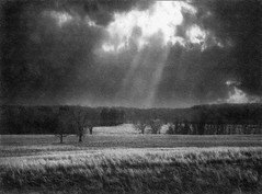 Wild Weather Over Valley Forge (kinglear55) Tags: film blackandwhite valleyforge olympus om2n weather art photography landscape monochrome