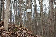 Boch Hollow State Nature Preserve (dankeck) Tags: forest trees woods notrespassing sign posted trespassing faded old hockingcounty ohio southeasternohio loganohio