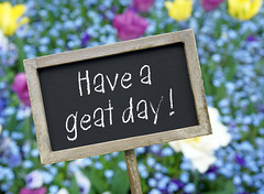 Have a great day ! (nithiyabhaskar) Tags: greeting birthday wellness flowers day great feeling relax haveagreatday happiness emotion positive time good break happy morning meeting message friendly friendship friendliness satisfaction communication nice like wish lucky friend client success service welcome support contact business teamwork workshop training consumer customer coaching successful positiveenergy celebration school sign chalkboard blackboard word unitedstatesofamerica