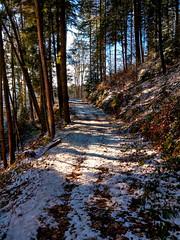 Schönmünzach, Höhenweg (MHikeBike) Tags: berge wasser bäume nationalpark schwarzwald nordschwarzwald murg murgtal baiersbronn huzenbach schönmünzach wandern wege ruhe berg winter schnee snow wald