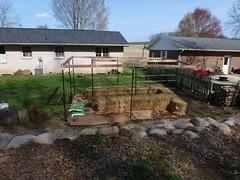 P1080028 (LPompey) Tags: garden strawbale gardening strawbalegarden