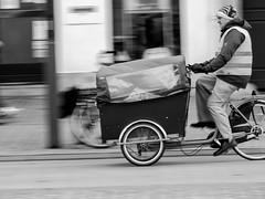 Turnhout in het Zwart-Wit / Black and White Turnhout (erik.verheyen) Tags: turnhoutinhetzwartwit hetstation demerodelei hetstadspark blairon hetgerechtshof kasteelvandehertogenvanbrabant begijnhof dewarande sintvictor sintpieterskerk hetstadhuis debronzennajade marktplein monochrome blackandwhite city people saintpeterschurch statues history view