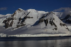 IMG_6878 (y.awanohara) Tags: cuvervilleisland cuverville antarctica antarcticpeninsula icebergs glaciers blue january2019