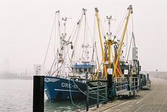 foggy Hooksiel harbour (ro_ha_becker) Tags: film analogue leicastandardconvleicaii canon1450mmltm fujipro400h hafen harbour hooksiel fishingboat boat ship shrimper fog mist