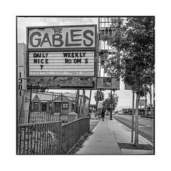 gables • las vegas, nv • 2018 (lem's) Tags: gables abandonned motel ruin derelict street pedestrian passant rue ruine abandonné las vegas nevada nv rolleiflex t