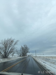 February 16, 2019 - An afternoon snow covers the landscape. (LE Worley)