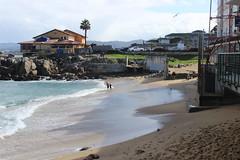 IMG_9808 (mudsharkalex) Tags: california monterey montereyca canneryrow mcabeebeach beach