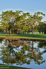 18-52 Josée Ferland - Lumière naturelle (Josée Ferland) Tags: floride fort lauderdale inverrary country club golf