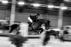 Horse Show Jumping competition (nicolas-7878) Tags: horse show cheval cavalier jumping fast speed compétition franchecomté france doubs obstacle nikon nikond5500 tamron 2470 cso personne noirblanc blackwhite bw nb rapide course vitesse noiretblanc