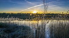 Zilvermeer (Geert E) Tags: nature landscape sunset sun water pool cane
