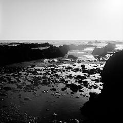 ... (JonnyEnzyme) Tags: tasmania 2018 mamiya c330 w 80mm f28 kodak trix 400 ilfotec hc heybridge sea