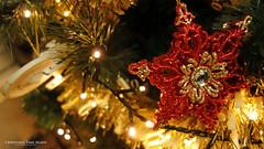 Christmas Time Again (AreKev) Tags: christmassnowflake snowflake christmasstar star merrychristmas bauble christmastree christmas xmas tree led lights christmasornament ornament decoration festive bokeh macro sonycybershot sony cybershot sonydscrx100 dscrx100