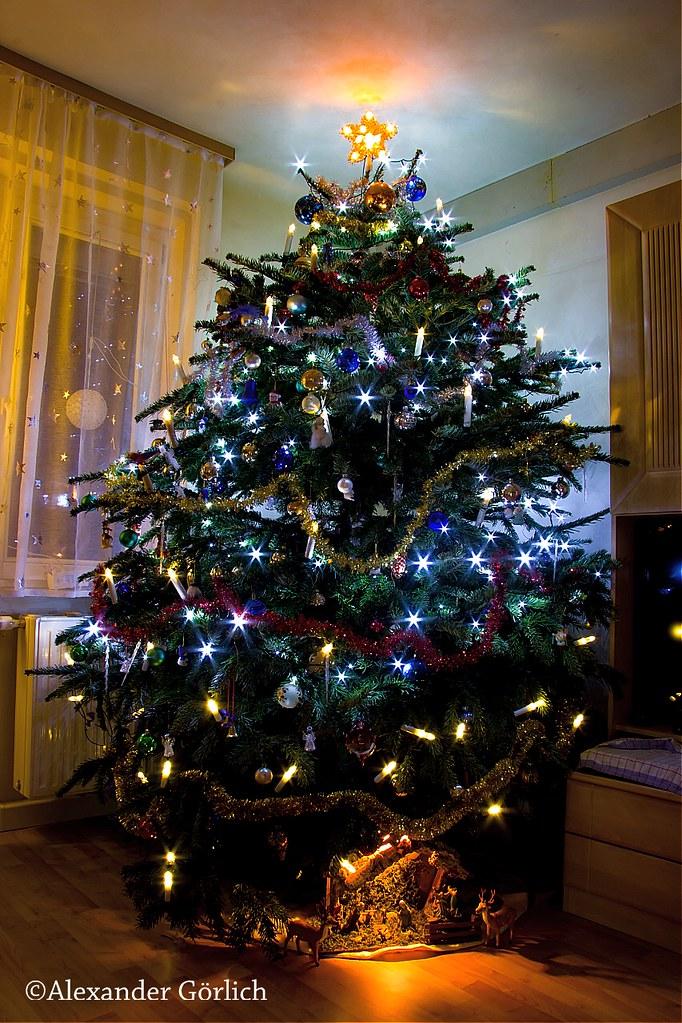 österreich Weihnachtsbaum.The World S Best Photos Of Weihnachtsbaum And Wien Flickr Hive Mind