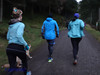 DSC09759 - Whinlatter Forest parkrun 2018 12 29 (John PP) Tags: johnpp parkrun whinlatter forest lake district run hills hilly cumbria 29122018 jog walk winter 29december2018