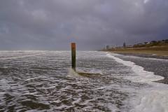DSC02791 (ZANDVOORTfoto.nl) Tags: zandvoort edwin keur fotografie aan zee strand nederland netherlands kust coast shore beach beachlife strom stormy weather stormyweather wind hardwind sandstorm