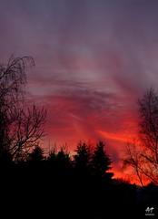 Sunset (Vosges, France)