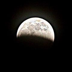 2019 020/365? Lunar Eclipse (_BuBBy_) Tags: wolf eclipse blood super moon lunar 365 020365 020 2019