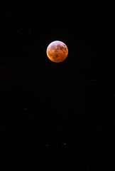 Lunar Eclipse (zachclarke) Tags: richmond richmondva rva va virginia 2019 january lunareclipse eclipse moon superbloodwolfmoon januaryeclipse supermoon bloodmoon wolfmoon nikon nikond5600 d5600 zachclarke2 zachclarke stars star starfield night nightsky sky darksky
