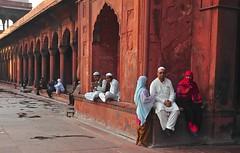India- Old Delhi- Jama Masjid (venturidonatella) Tags: india asia olddelhi2delhijama masjid colori colors persone people gentes gente muslim musulmani islam nikon emozioni emotion moschea mosque portrait portraits ritratto ritratti nikond300 d300