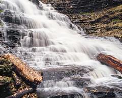 (Matt Allouf) Tags: bronica 645 etrsi 120 kodak ektar 100 medium format color film epsonv500 ricketts glen state park pennsylvania
