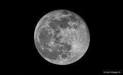 Tonight's Full Moon At %100. 01/21/2019 (riltsiferjan1) Tags: cold winter fullmoon nikon photography lunar moon