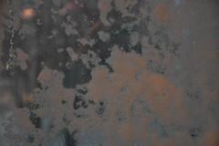 Tuisk Rakveres (anuwintschalek) Tags: nikond7200 18140vr eesti estland estonia rakvere talv winter january 2019 schnee snow snowfall tuisk schneesturm schneefall lumi lumesadu aken window fenster aknaklaas