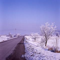 (marcin.malicki) Tags: winter snow slide kodak ektachrome e100s expired e6 kodakfilms mamiya c33 squareformat mediumformat mf 6x6 analog selfdeveloped sekor buyfilmnotmegapixels