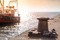 Sitting on the Dock.... (Dave Denby) Tags: fishing leighonsea post bollard rust sea boat dock quay