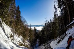 0070_GOPR4521 (marcellszmandray) Tags: kirándulás tél lucskaifátra szlovákia hó fátra ferrata viaferrata hzs